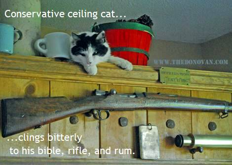 Conservative ceiling cat bitterly clings to his bible, his rifle, and rum.